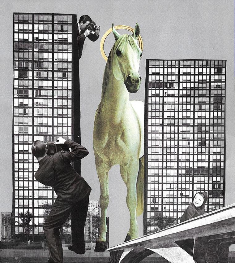 A HORSE, A HORSE... 2017